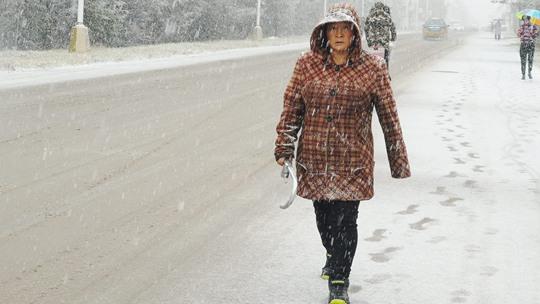 黑龍江漠河迎降雪 一片銀裝素裹