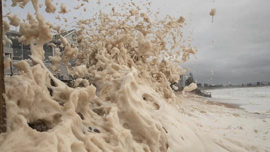 涨潮加大浪 大量泡沫冲上悉尼海滩