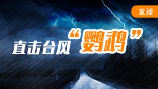 直播:2020首個登陸我國的臺風來襲