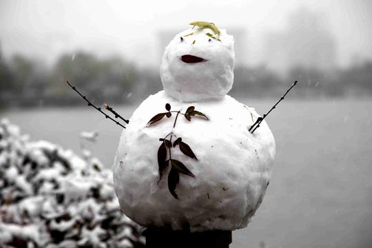 雪花片片随风舞 西安大明宫遗址雪景迷人