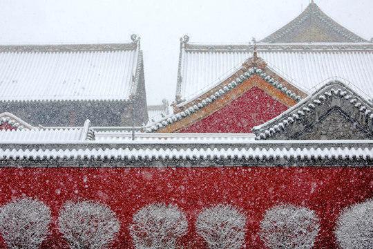 沈阳故宫:红墙绿瓦映瑞雪