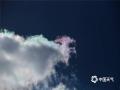 """今日(21日)正午时分,石景山区闪现""""七彩祥云""""!云的形状也惟妙惟肖,有的像骏马,有的像彩凤。(摄影/王旭  撰文/柚柚)"""