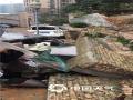 3月23日上午,受冷空气影响,广东省遂溪县西北部乡镇普遍出现短时强降雨,其中遂城镇录得全县最大小时雨量65.3毫米。短时强降水雨的袭扰导致了遂溪县城一小区的围墙倒塌,停靠在围墙边上的轿车和电动车被砸得面目全非,所幸没有造成人员伤亡。广东气象台预计,24-25日广东中北部仍有大雨局部暴雨,其余市县仍有小到中雨局部大雨。(庄晶霞 拍摄)