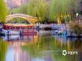 泉城济南护城河春色。(图/李峰 文/王连珍)