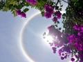 """今天11时左右,天气晴朗的金沙江河谷地区高空被冰晶状卷层云覆盖,由于云层对太阳光的反射作用,12时乌东德水电站上空出现""""大日晕"""",持续时间长达两小时。(图文/刘祎 谢洪斌 张昭晖)"""