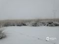 昨日(10日)内蒙古巴彦淖尔市乌拉特中旗大部地区出现降雪天气。监测显示,10日8时至11日8?#20445;?#20044;拉特中旗海流图镇累积降雪7.2毫米,达大雪量级。这次降雪将较大程度的改?#39057;?#22320;土壤墒情,?#33322;?#24178;旱,加速牧草返青,为牧业生产带来良好条件。(文:田艳芳 图?#27627;?#27874;)