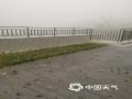 昨天(11日)下午16时30分,受强对流天气影响,广州增城突降冰雹,并出现了雷雨大风天气,局地录得12级大风。受暴雨、大风、冰雹共同影响,增城区一片狼藉。图为增城气象局基准站外,遍地冰雹。(图/陆杰英 文/黎洁仪 曾宇萌)