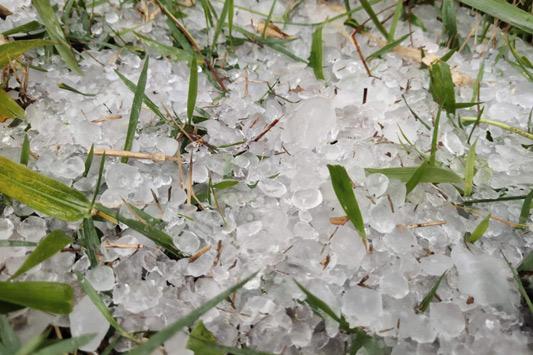 冰雹!12级大风!广东增城∑ 遭遇强对流