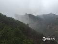 """随着一场春雨的到来,近两天的早晨,河北承德金山岭长城景区出现了大雾。雾气里,映衬着山峦起伏的长城若隐若现,犹如一条""""巨龙""""穿梭于云雾之中,气势磅礴。(图/周万平)"""