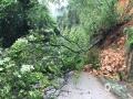 18日夜间到19日早上,广东省肇庆市广宁县出现暴雨到大暴雨的强降水过程,并伴有10级以上的大风,南街镇和五和镇还出现冰雹。由于此次强降水过程猛而急,并伴有大风冰雹等强对流天气,导致广宁县多地出现山体滑坡、农田被淹、水浸街、树木被刮倒的现象,受灾情况较重。图为广宁出现山体滑坡,树木倒伏在道路中间,影响交通出行。(摄/许献麟 文/方英城)