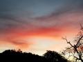 艳丽的晚霞在天边弥散、延伸,渐渐趋于火红,云团似火焰般燃烧,似波浪般汹涌,似开出的朵朵绚丽玫瑰,给傍晩的西双版纳披上了斑斓的彩衣,于幽静中透出了另一种缤纷,犹如一幅幅美丽的织锦。 图/岩拉  文/周春美