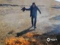行路途中,突遇火情,呼伦贝尔市气象局局长亲身上阵扑火。(图片来源于呼伦贝尔市气象局)