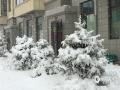 受冷暖空气共同影响,内蒙古锡林郭勒盟多伦县昨日(24日)出现连续性降水天气,以雨夹雪为主,截止今日08时降水量达19.2毫米,为暴雪量级,积雪深度达10厘米左右。降雪导致路面湿滑,能见度较差,随着气温下降昨夜到今晨形成道路结冰,严重影响交通安全。(文:郭敏 图:成日晟)