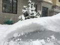 昨天(24日),内蒙古锡林郭勒盟多伦县出现降雪天气,当地气温较低,出现结冰。(成日晟 摄)