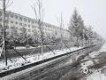 4月24日,锡林郭勒盟多伦县降暴雪,降雪导致路面湿滑,严重影响交通安全。(张国兰 摄)