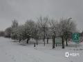 4月24日,锡林郭勒盟多伦县降暴雪,积雪较深,气温较低,当地一派冬日景象。(张国兰 摄)