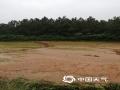 中国天气网讯 近日,受强对流天气影响江西多地出现对流性降水天气过程,在4月24日晚上和25日清晨多地出现不同程度的灾害性天气,大风吹折公路两旁树木,强降水冲毁乡村公路路基,还有居民住宅屋顶被大风掀翻,短时强降水将农田淹没,局地还出现了冰雹天气。图为4月24日,永丰县君埠乡杜溪、铁元、大田、银田等村降下冰雹,冰雹最大直径有4cm,佐龙乡棱溪小山塘决口冲毁部分农田及水稻。图/文  邱文丽、李明