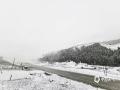 中国天气网讯 4月26日,受冷空气影响,乌鲁木齐县南山山区迎来了一场大雪。截止到26日12时,降水量达14.6毫米,南山已返青的牧草又被白雪覆盖。(图/文 陈亮 薛俊梅)