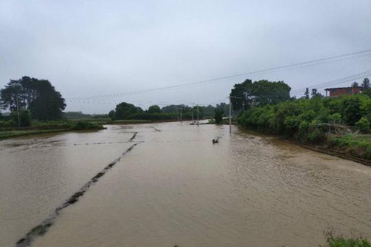 局地大暴雨!湖南东安多处�塌方 成片农田被淹