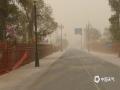 中国天气网讯 今天(11日),内蒙古阿拉善盟额济纳旗持续大风沙尘天气,局地沙尘暴,下午15时的极大风速已经达到19.3米/秒,为8级大风,当地能见度和空气质量极差。驰名中外的胡杨林风景区也陷入风沙中,不见往日辉煌壮丽美景。(图/文 郭敏)