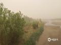 古老的弱水河道已有水渍,但河道的大部分面积仍被黄沙覆盖。(郭敏 摄)