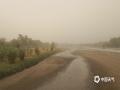 古老的弱水河道已有水渍,但河道的大部?#32622;?#31215;仍被黄沙覆盖。(郭敏 摄)