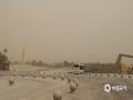 5月11日,内蒙古额济纳旗大风沙尘天气?#20013;?#24403;地天空昏黄。(郭敏 摄)
