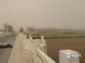5月11日,内蒙古额济纳旗出现大风沙尘天气,当地天空昏黄,胡杨林不见往昔美景。(郭敏 摄)