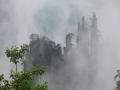 烟雨漫峰林 张家界云环雾绕宛如仙境