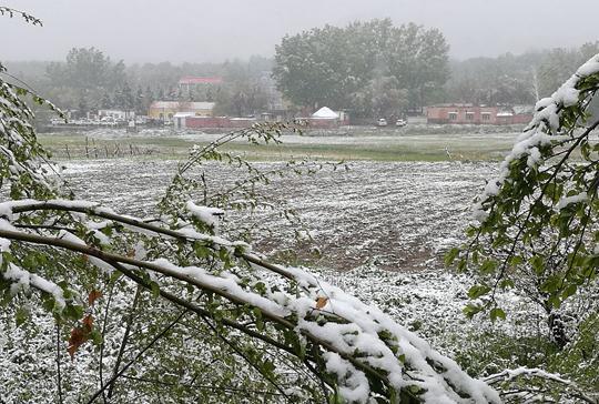 你已经穿短袖了 新疆阿勒泰却在五月飞雪