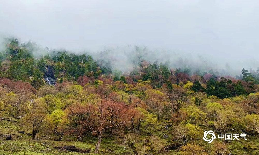 世外仙境 梅里雪山雨崩村云雾缭绕银装素裹