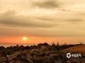 中国天气网讯 5月15日傍晚,海南海口雨后出现彩虹。微暗的天空下,夕阳的光勾勒出丝丝浮云,渲染出油画般的天空,给人一种奇幻的感觉。图为雨后夕阳美景。(文/董立就 摄影/阎建海)