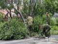 昨晚(26日),一场大雨同时伴有阵阵狂风。辽阳市首山路附近,几棵大树被风吹倒横在道路上,树枝散落在地上。今天上午清理工作已经开始,工作人员说,昨晚风真是太大了,很幸运没有砸到人,目前正抓紧时间处理,并消除安全隐患。(图/文 高峻 徐婷)