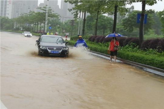 广东阳江雨势猛烈内涝严重 路上驾车如行船