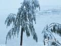 中国天气网讯 受强冷空气影响,27日凌晨开始,甘肃永靖出现雨(雪)天气,境内陈井、关山、徐顶、王台、川城、坪沟等山区乡镇出现降雪,积雪深度在10-16厘米之间,雪花飞舞间,带给了人们不一样的美。(图/司发梅)