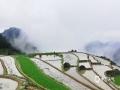 中国天气网讯 5月31日,雨后的广西龙胜县泗水乡竹坪村雾气缭绕,风景美不胜收,宛如仙境一般。(图/曾冰 文/伍钊)