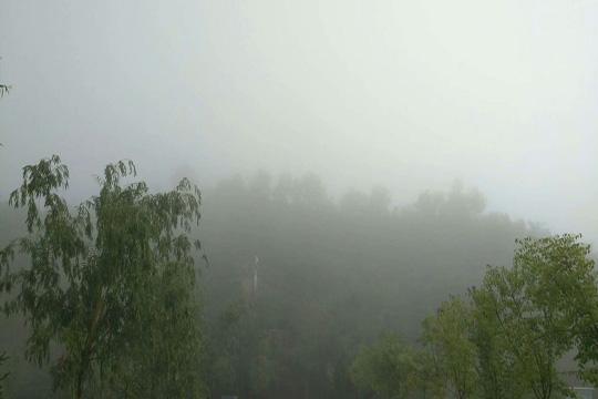 浓雾弥漫!甘肃皋兰最低能见度仅百米