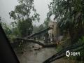 中国天气网讯 昨天(5日)下午,广东韶关曲江区出现短时强降水和大风天气,导致多起险情。罗坑镇遭遇8级大风(19.2米/秒),多颗大树被狂风吹倒,阻碍了车辆和行人通行。图为罗坑镇k32+800处路段,大树被狂风吹倒,影响交通。(卢彩鸿/摄 邹韶芳/文)