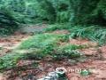 世界杯手机投注平台天气网讯 6月9日,江西的强降雨向南转移,吉安、抚州、赣州多地遭遇暴雨和大暴雨,信丰、大余、宁都、全南累计雨量超过100毫米。多地城镇和农田被淹、道路塌方,防汛压力重大。图为赣州市信丰县新田镇德坑村下坑路出现塌方。摄影/谢永超