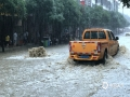 图为11日上午,南丹县城关镇出现内涝,汽车在积水中行车。(图/杨哲 文/叶小丽 杨哲)
