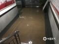 图为短时强降水致农业农村局办公室1楼进水。(图/梁虹)