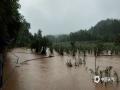 6月21日至22日,江西中北部遭遇强降水袭击。其中南昌、宜春、新余、萍乡、抚州、鹰潭等地市出现暴雨到大暴雨。由于累计雨量大,山洪和地质灾害风险进一步升级,雷电、城乡积涝频发。图为新余市渝水区良山镇某有机蔬菜基地被淹没 摄影/顾敬