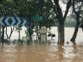 中国天气网讯 7月5至7日,受高空槽和低空急流影响,柳州全市出现了暴雨、局部大暴雨到特大暴雨天气。持续的强降雨,导致柳州市区的柳江河段水位上涨。今天(8日),滨江东路至滨江西路、金沙角被水淹没,相关部门已进行交通管制,给市民的出行带来一定困扰。(图文/廖婷婷 )