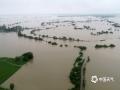 中国天气网讯 6日以来,强降雨连番袭扰江西,昨天(8日)宜春、新余、吉安、抚州、鹰潭和上饶市出现大暴雨,萍乡甚至遭遇了特大暴雨。连续降雨导致多地内涝严重、河水上涨,市民出行困难。图为江西东乡暴雨洪水致稻田成泽国。(图:黄丽玲)