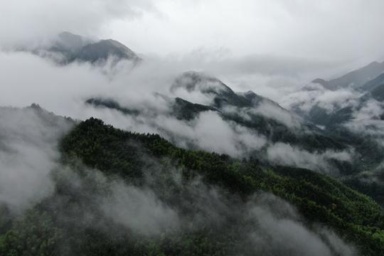 云雾缭绕如仙境 湖南平江县连云山雨后美景
