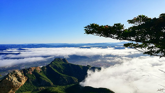 如在云端 河北承德围场云海气势磅礴