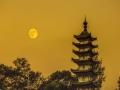 大发红黑安徽 歙县 十五的月亮十六圆