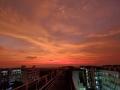 大发红黑广东 湛江雨后现绚烂红晚霞 染红天空