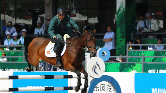 武漢軍運會:軍運馬馳騁賽場展身姿
