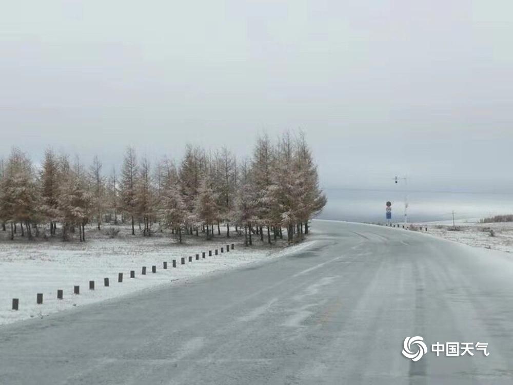 惠灵顿天气_内蒙古全区气温暴跌 部分地区降下暴雪-图片频道-中国天气网